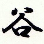 Renshi (Instructor) del Estilo